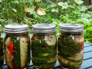 Szechuan Dill Pickling Spice